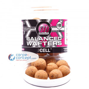 MAINLINE the cell balanced wafters 18mm 1