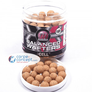 MAINLINE Balanced Wafters 12 mm The Cell 1