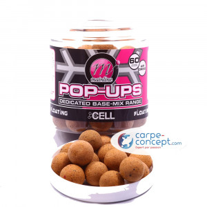 MAINLINE Pop-up Top Range The Cell 1