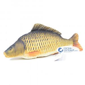 GABY Common carp